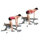 dumbbell-row-one-arm